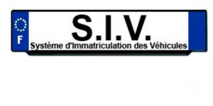 SIV ANTS