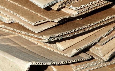 carton 1154x768